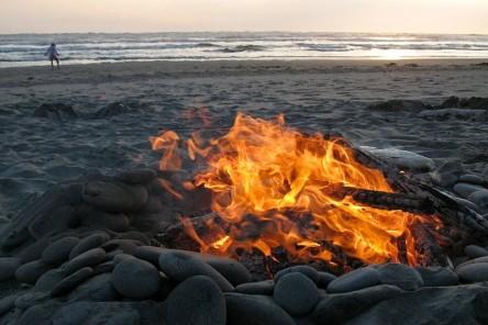 driftwood fire