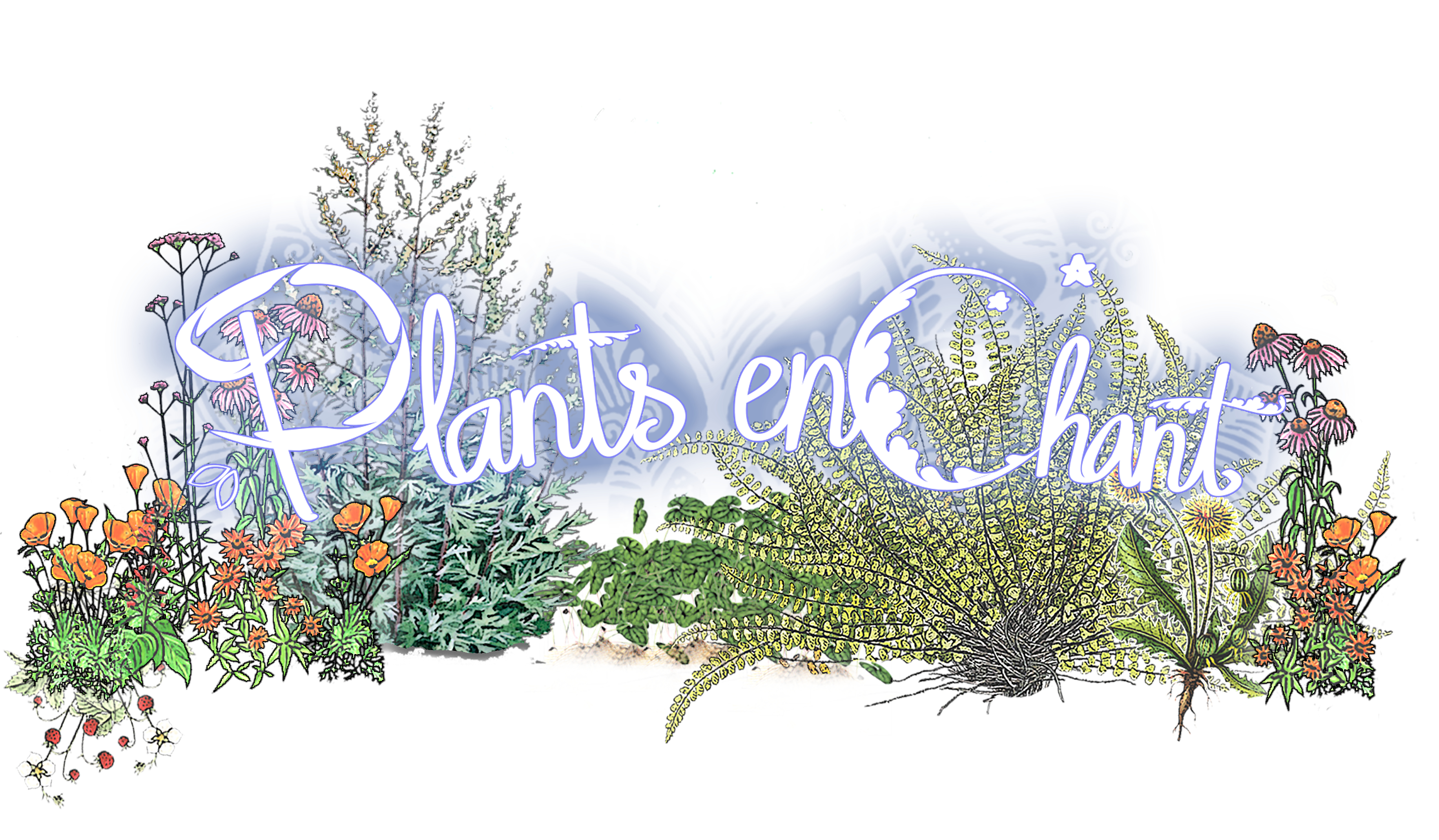 Plants enChant – Singing Alive
