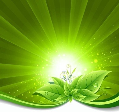 green_leaves_on_burst_background_vector_illustration_569695