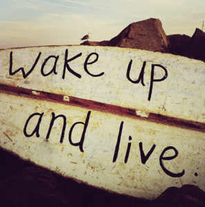 wake-up-and-live-board
